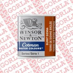 074 COTMAN 1/2 GD W&N BURNT...