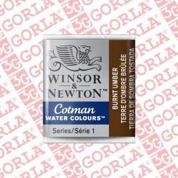 076 COTMAN 1/2 GD W&N BURNT...