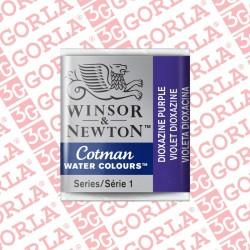 231 COTMAN 1/2 GD W&N...