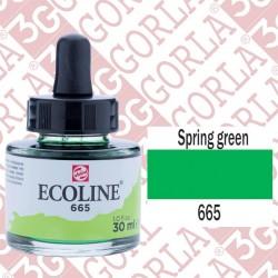 665 ECOLINE DA 30 ML...