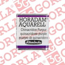 491 HORADAM AQUARELL 1/2GD...