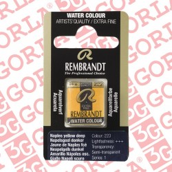 105 REMBRANDT OLIO 40ML...